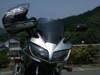 2008_05220002_1